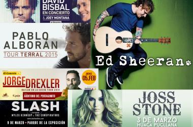 Los conciertos del 2015