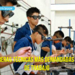 Carreras técnicas en el Perú