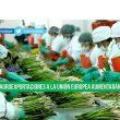 Agroexportaciones se quintuplicaron entre 2001 y 2015