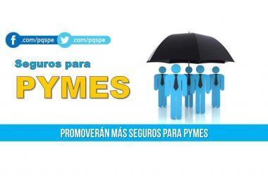 Pymes, seguros, asegurar negocio