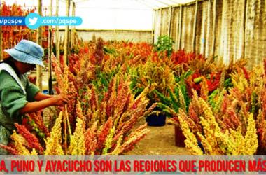 PQS producción de Quinua Perú