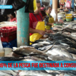 pesca consumo humano directo