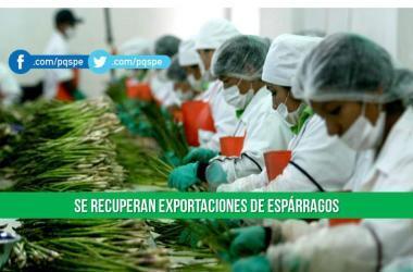 Exportaciones, exportaciones peruanas, como exportar, Adex