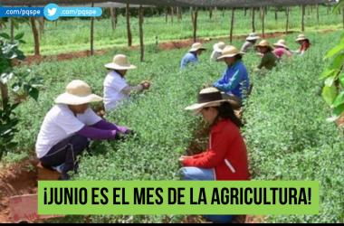 agricultura, agricultores, Ministerio de Agricultura, produccion nacional