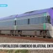 tren bioceánico, Perú, Brasil, Ferrovía