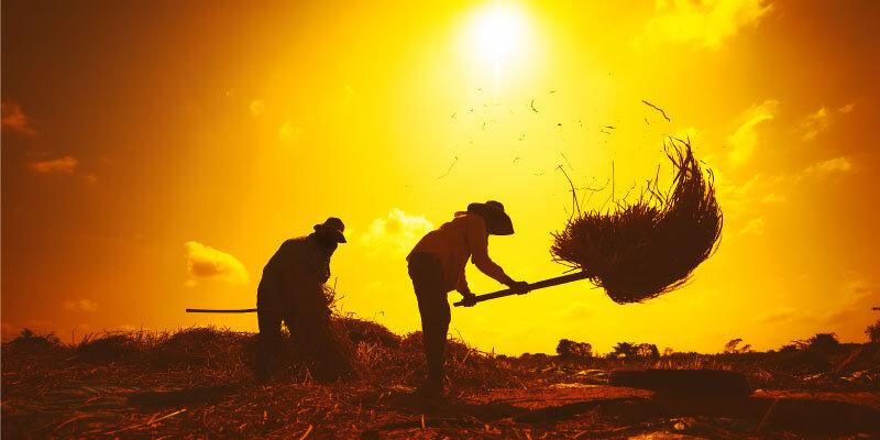 agricultura pesca impacto PBI