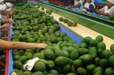 Exportaciones, agroexportaciones, Corea del Sur, Adex, productos no tradicionales