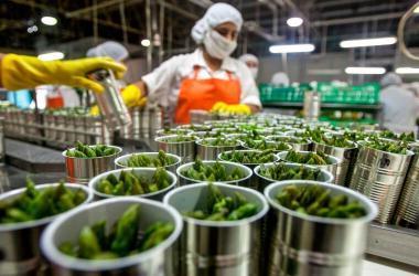 Exportaciones agrarias crecimiento