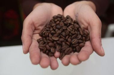 Cafe, importaciones, importaciones americanas, Estados Unidos