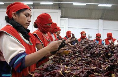 cebolla, paprika, exportaciones, Estados Unidos, España, agroexportaciones perú, proyecto Olmos