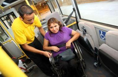 ley, discapacidad, transporte