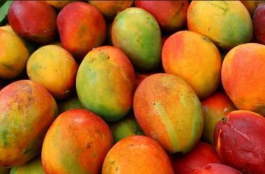 exportaciones, agroexportaciones, Corea del Sur, minagri, mangos