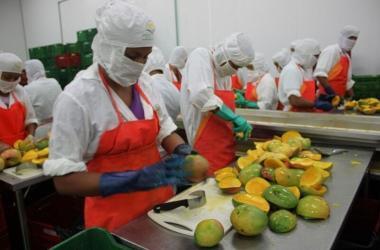 Exportaciones, agroexportaciones, Corea del Sur, mangos, exportaciones peruanas
