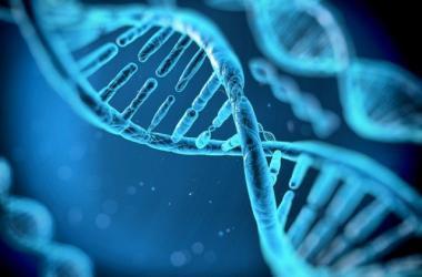 avances tecnológicos, genética, robótica