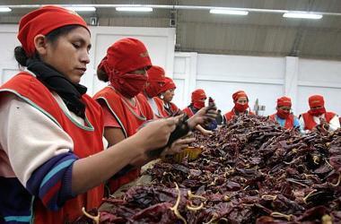 Exportaciones, ajíes, pimientos, agroexportaciones, Adex