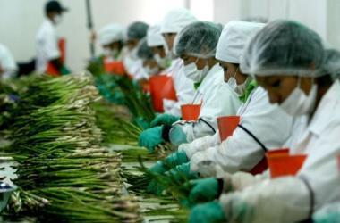 Agroexportaciones, Adex, exportaciones, espárragos, quinua