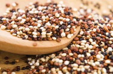 quinua, indecopi, AgroRural, Quinua del Sol