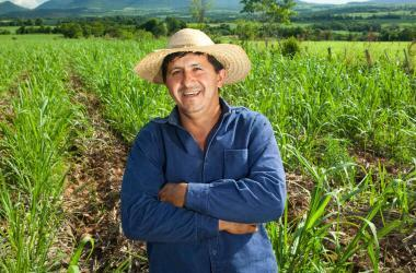 Dia del campesino, agricultura, ministerio de agricultura