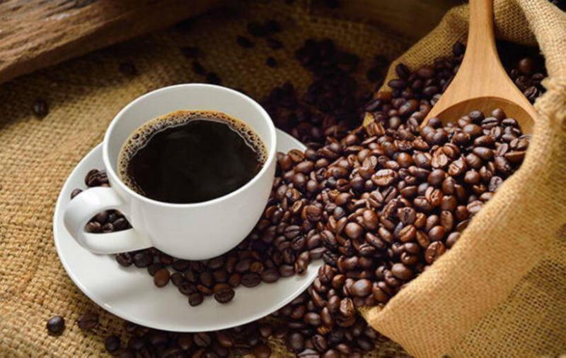 Producirán café peruano con calidad de taza y resistencia a plagas