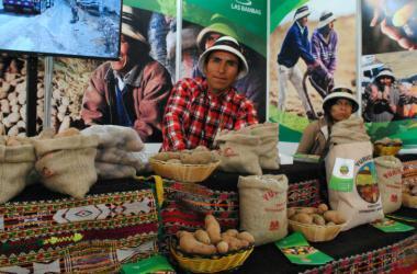 Productos de papa nativa en Mistura.