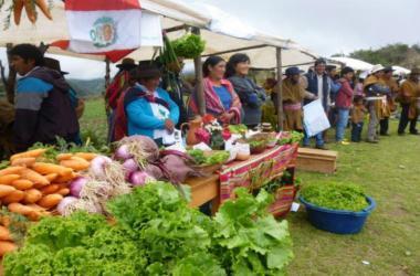 Promueven la puesta en marcha de 16 emprendimientos en Apurímac