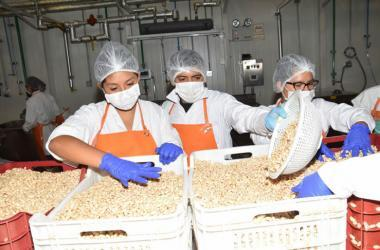 USIL procesa alimentos nutritivos para damnificados por lluvias y huaicos