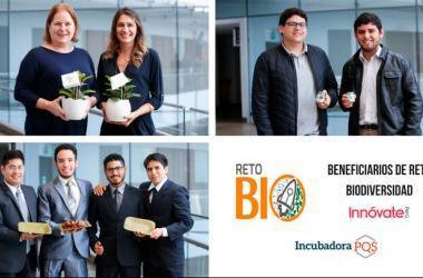 Los emprendimientos obtuvieron un cofinanciamiento de hasta S/50,000 para el desarrollo de esas soluciones innovadoras. (Foto: Fundación Romero)