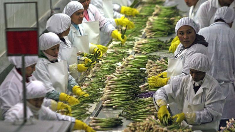 Se dio incremento al empleo formal, pasando de 16% en el 2004 a 25% en el 2017. (Foto: Andina)
