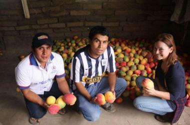 Las empresarias ganadoras vienen de diferentes sectores, desde energía sostenible hasta agricultura, pero tienen en común propuestas innovadoras. Foto: Andina