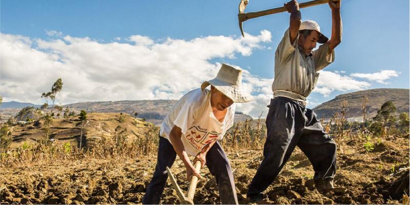 ley agraria peru 2021