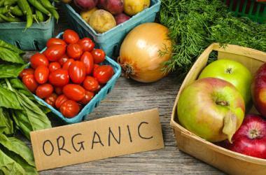 productos organicos tributos