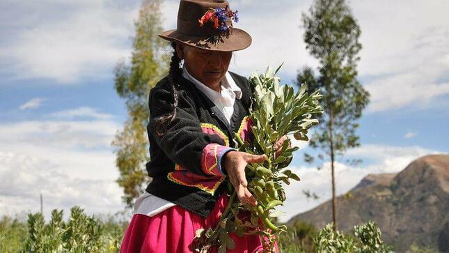 Oficializan ley que promueve empoderamiento de mujeres rurales e indígenas