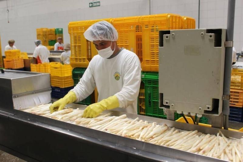 Adex: Empleos asociados a exportaciones peruanas crecieron 6.6% en primer bimestre