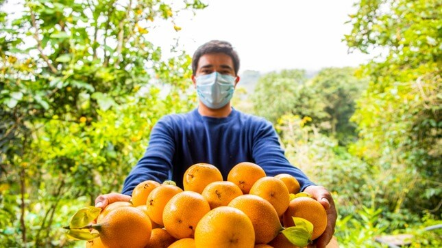 Granadilla peruana: un producto de agroexportación emergente