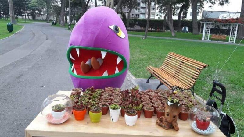 Bokitas Perú: ¡El emprendimiento que vende plantas carnívoras como mascotas!