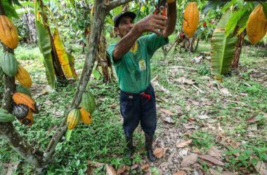 Inician programa piloto para impulsar potencial exportador de mipymes peruanas