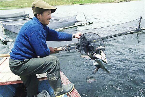 Pesca y acuicultura: autorizan subvenciones por S/ 3.5 millones para proyectos