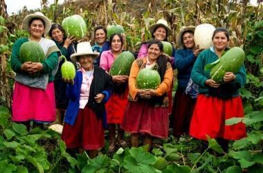 """Premio """"Medalla MIDAGRI 2021"""" reconocerá competitividad agraria"""
