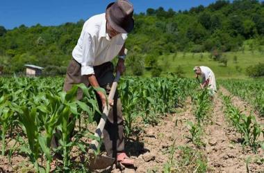 Agricultores accederán a banca por internet, anuncia Agrobanco