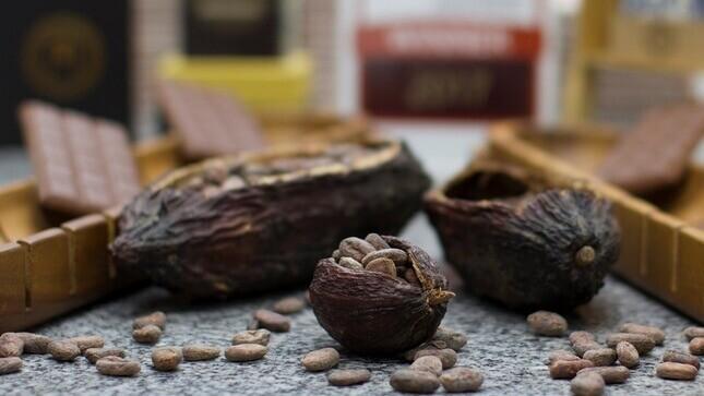 Chocolate artesanal peruano logra medallas y reconocimiento internacional en París