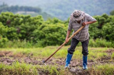 Día del Campesino: cómo impulsar el crecimiento y la productividad de la agricultura desde la industria