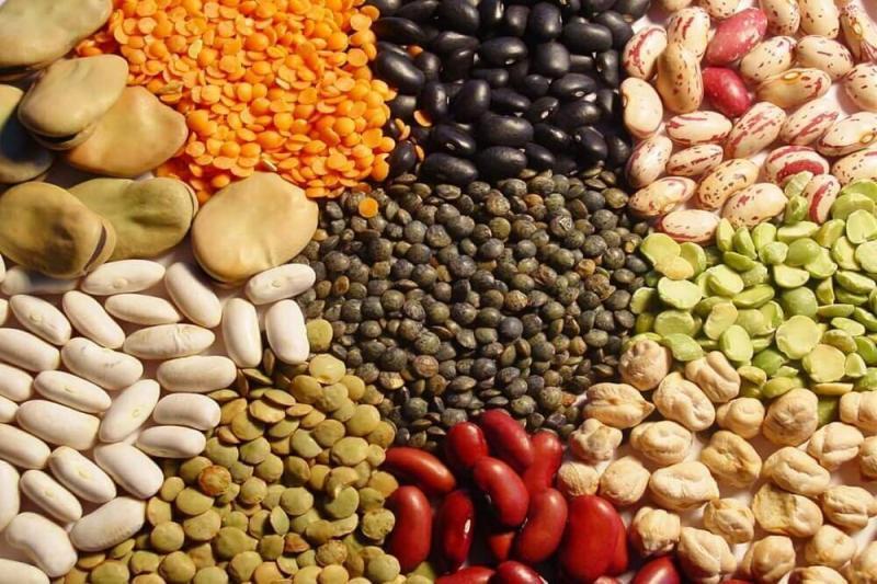 Buscan impulsar la cadena de valor de las legumbres