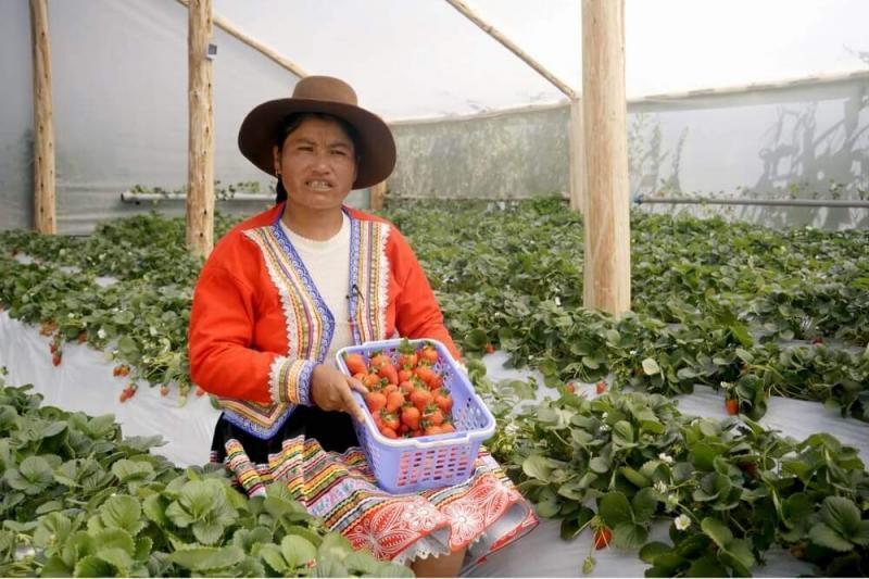 Treinta y nueve mil mujeres rurales del Perú accedieron a créditos en últimos dos años