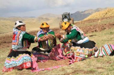Más de medio millón de mujeres desempeñan actividades agropecuarias en el Perú