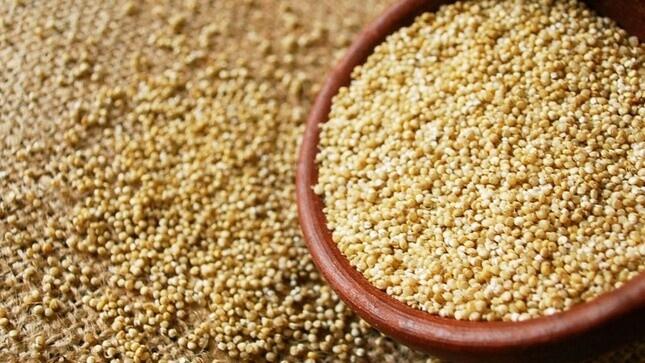 """Quinua es el principal grano de exportación que llega a 50 países del mundo como """"superfood"""""""