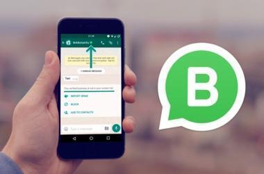 whatsapp business funciones