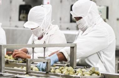 Vuelve Programa de Apoyo a la Internacionalización: buscan que empresas peruanas consoliden exportaciones