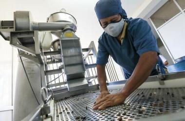 Subsidio a planilla beneficia a 45,000 empresas y promueve activación de 341,000 empleos formales