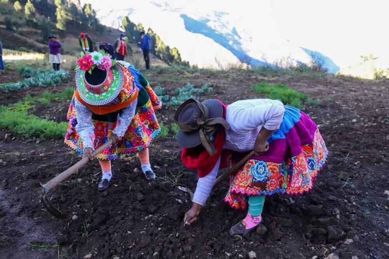 Pobladores huancavelicanos desarrollan emprendimientos en horticultura