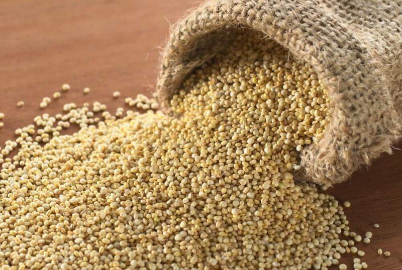 ADEX pide impulsar la exportación de quinua con valor agregado